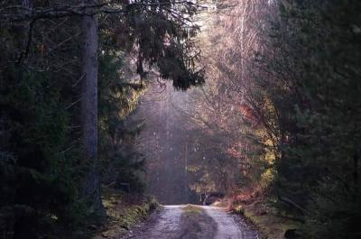 piekno-natury433