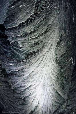piekno-natury231